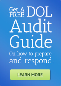 dol-audit-guide-cta